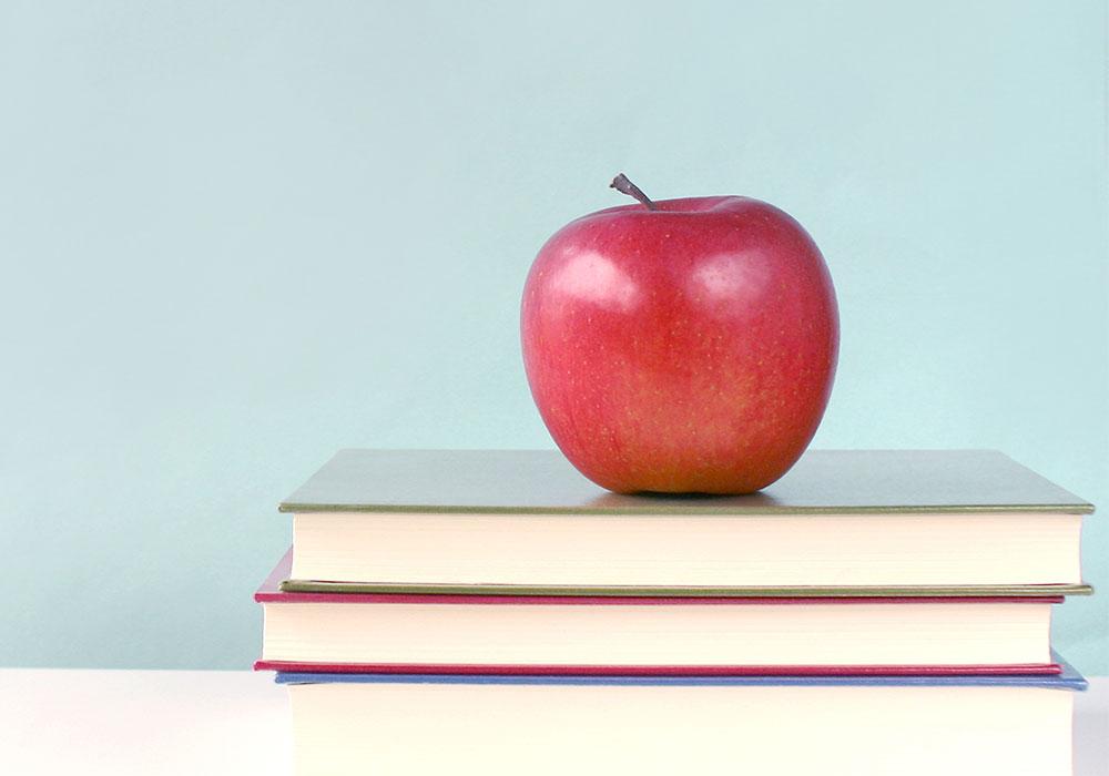 リンゴと理論